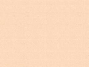 1495-БЧ (1030) Бязь гладкокрашеная цвет 121107 бежевый, ширина 220см