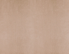 "Ткань блэкаут ""Кармен"" HH Y115GD2037-04/280 BL светлый каппучино, ширина 280 см"
