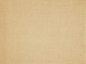 15с337-ШР 220*214  Простыня цв.981 карамель