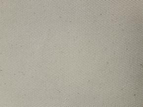 Башмачное полотно арт. 2780103/900-1 хлопок 100%,пл.345г. ЭКО