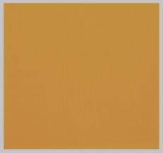 11С520-ШР 45*45 Салфетка цв.899 1178 горчичный