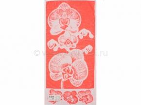 6с104.413ж1 Орхидея Полотенце махровое 81х40см