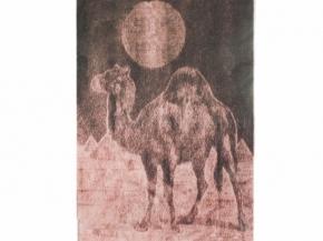 Плед верблюжья шерсть 75% 140*200 цв. корич.