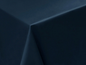 08С6-КВгл+ГОМ т.р. 1346 цвет 19-4050 ширина 305 см