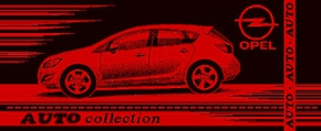 6с103.415ж1 Opel Полотенце махровое размер 104х50см